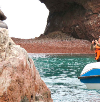 Tour Islas Ballestas – Tambo Colorado Full Day